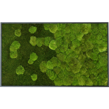 Merge Forest And Pole Moss Fringe 100 x 60 Cm