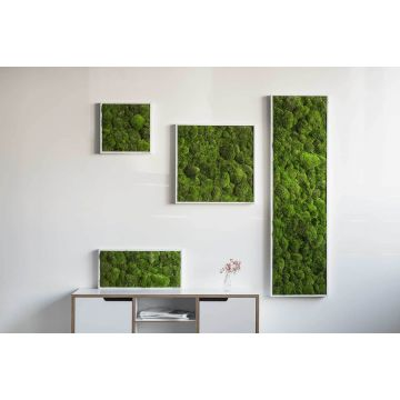 Pole Moss Picture 140 x 40 Cm