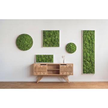 Pole Moss Picture 55 x 55 Cm