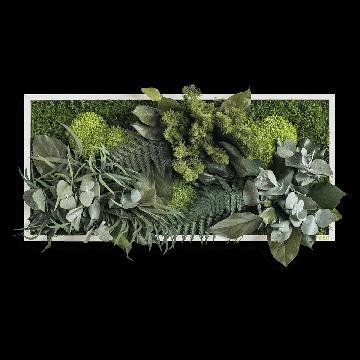 Plant Island Fringe 57 x 27 Cms