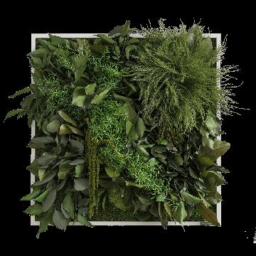 Jungle Wall Fringe 55 x 55 Cms