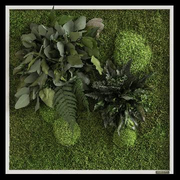 Plant Island Fringe 55 × 55 Cms