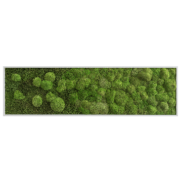 Merge Forest And Pole Moss Fringe 140 x 40 Cm